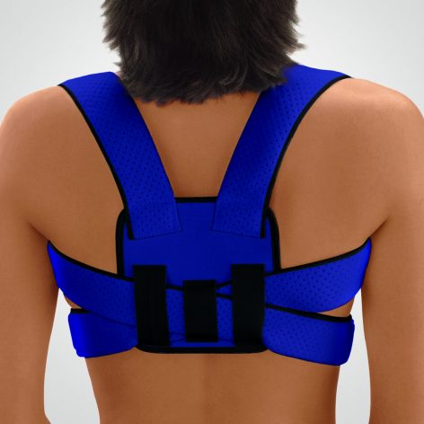 Blue, Back View