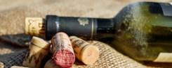 A bor útja a vásárlóig 2. rész