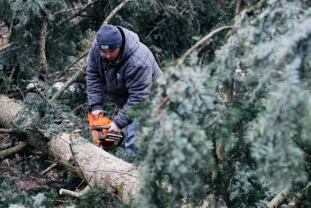 Senad Begić, the man who fixed the chainsaw and saw the tree like a cake. Photo Tomo Vrešak