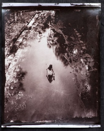 An albumen print toned with gold-chloride from a wet plate collodion negative.