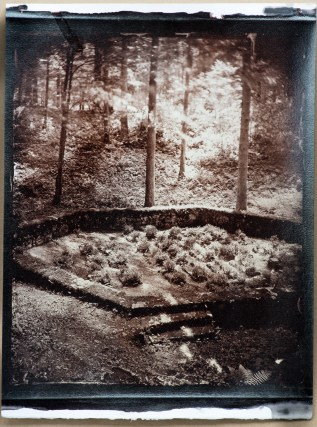 Albumen print, toned with gold, from a retouched wet plate collodion negative. The motif is a graveyard of partisan hospital Jelendol where 45 resistance figheters were burried during second world war. The photograph is a part of project by author Borut Peterlin, about an ancient woodland of Kočevski rog in Slovenia, EU.