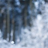 HvdB20121208-009