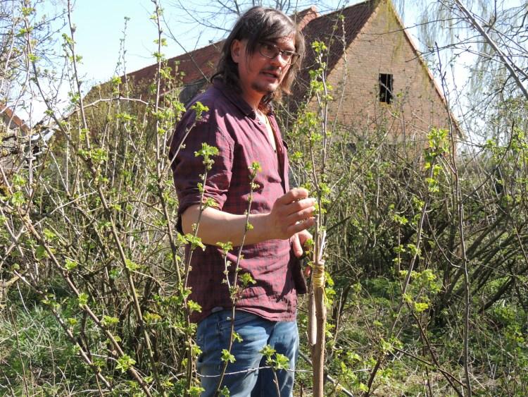 voedselbos-woudezel-lessenreeks