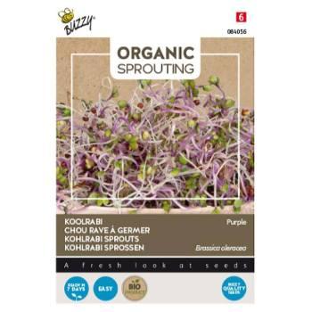 Organic-koolrabi-buzzy