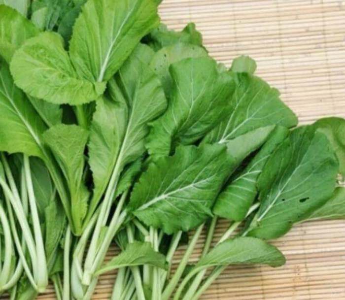 Nama jenis sayur sayuran sawi hijau