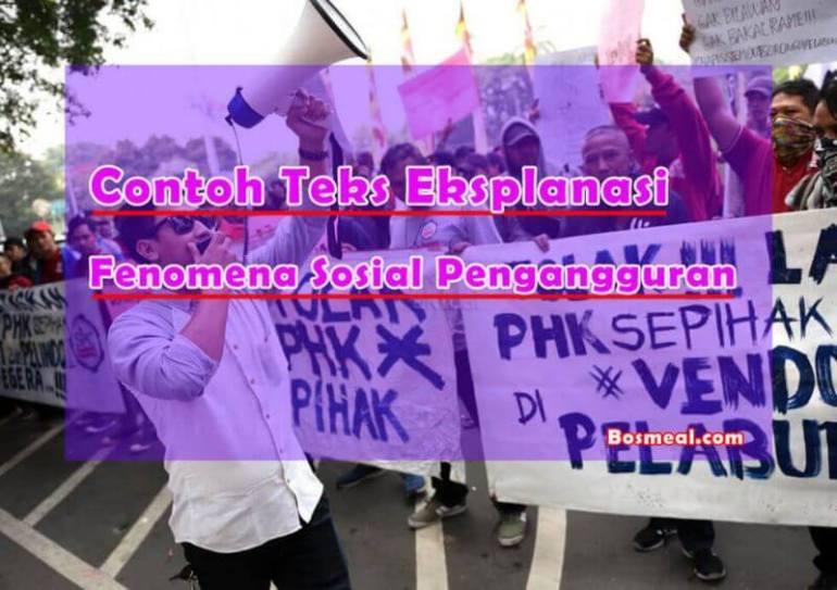 Contoh Teks Eksplanasi Fenomena Sosial Pengangguran - Bosmeal.com