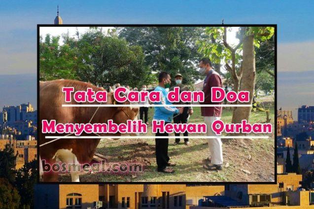 Tata Cara dan Doa Menyembelih Hewan Qurban