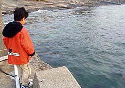 正月の岸壁でメバル釣り