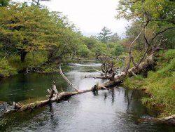 奥日光湯川