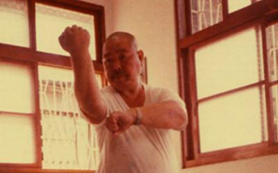 Wang Shu Chin,maestro de taichi chuan, pakua chang y hsing-i chuan