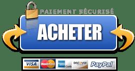 Acheter PayPal COURS A VIE WEBMASTER WORDPRESS Boss Arts