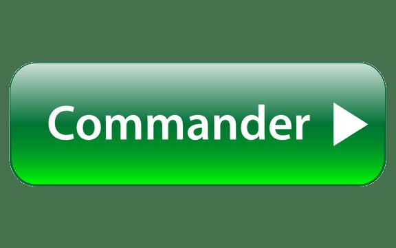 Commander COURS A VIE WEBMASTER WORDPRESS Boss Arts