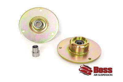 Air ride camber plate