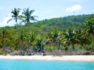 Tropical Svenden's Beach.