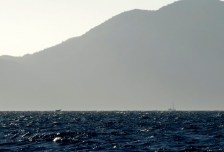 See the whale's tail on the left
