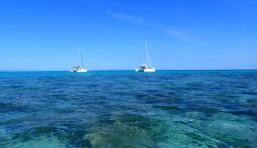 Chances and Bossa Nova in the 'lagoon'