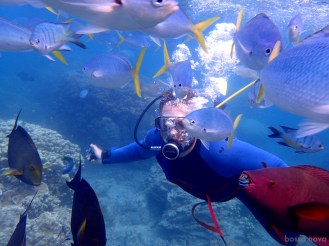 Feeding the fish. Tim using our Power Dive. Check out the teeth on the red parrot fish.