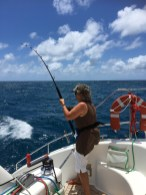 All action with my spanish mackerel catch. Can't believe I had white shorts on this day!