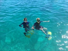 The snorkelers!