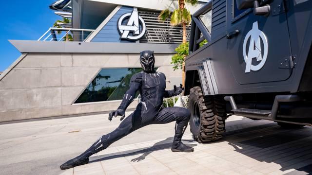 Avengers Campus assets
