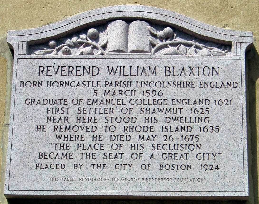 Blaxton Tablet
