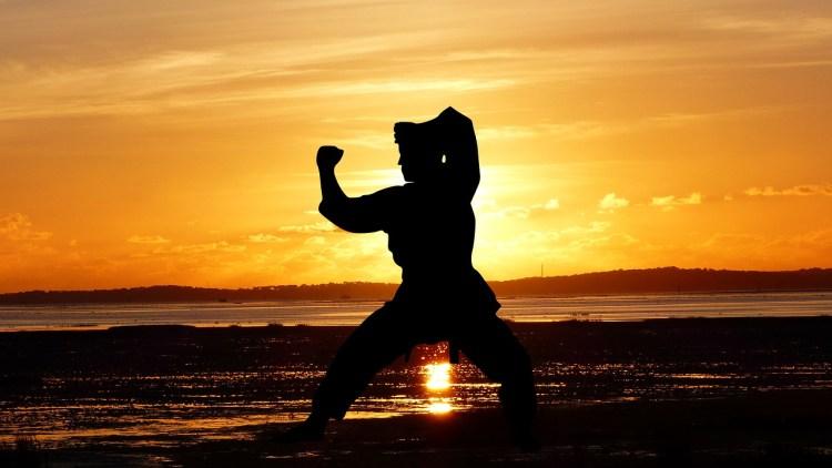 man training martial arts on sunset