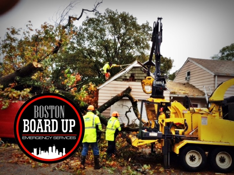 boston-board-up-emergency-services-tree-vs-structure-007