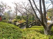Asakusa 051