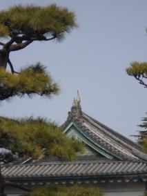 Palacio imperial 027