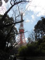 tokyo tower 118