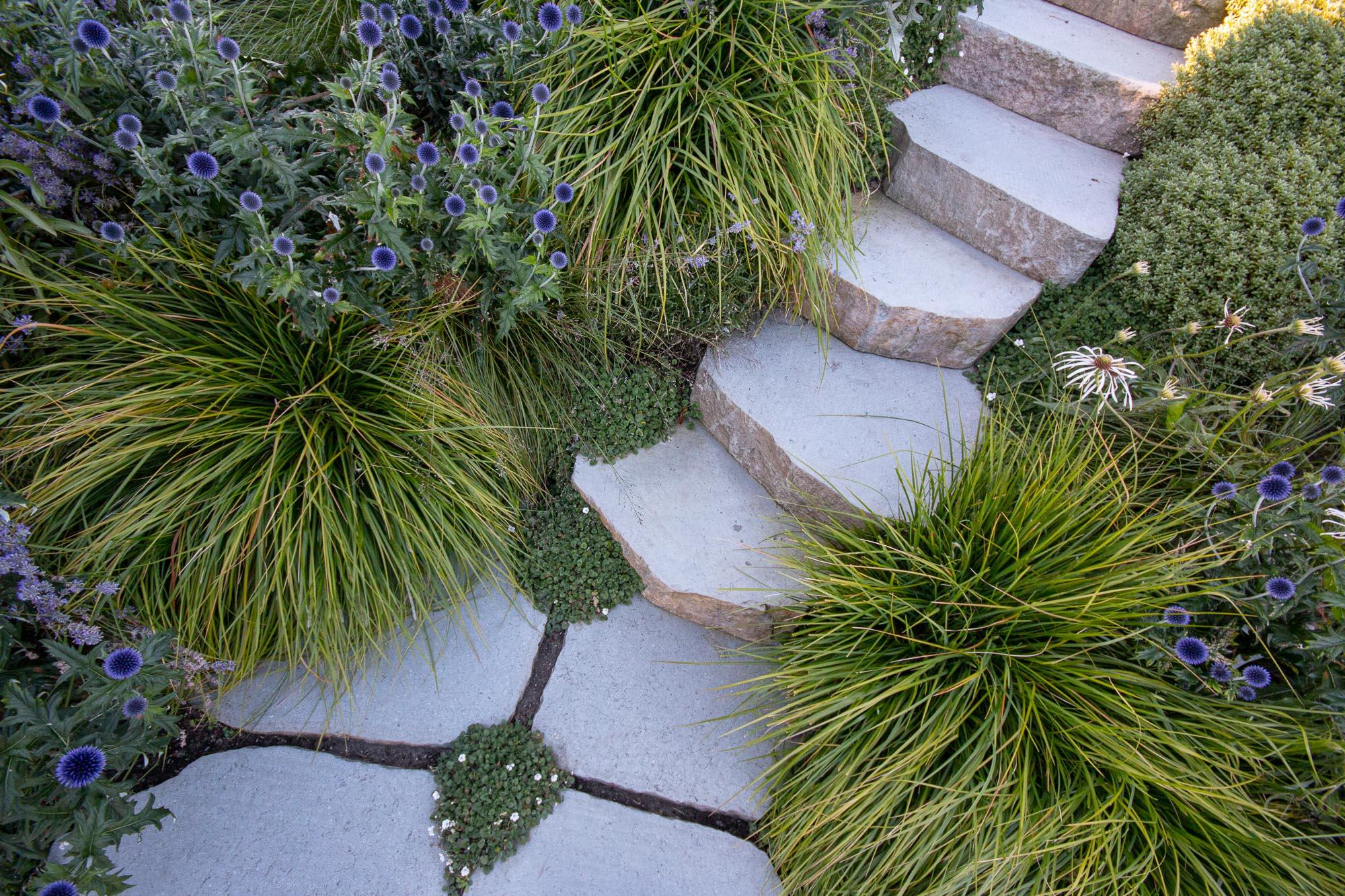 Rosebery - Botanica Design