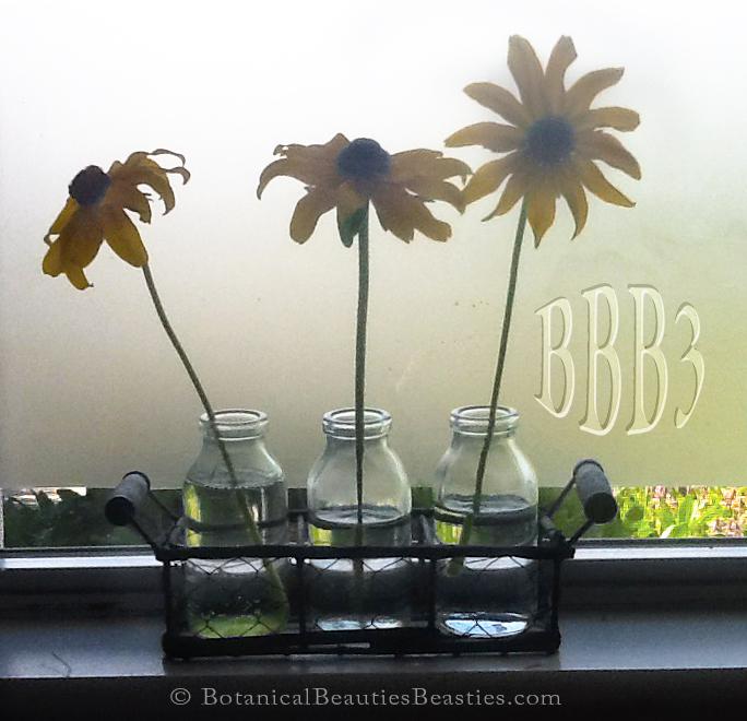 # Flowers