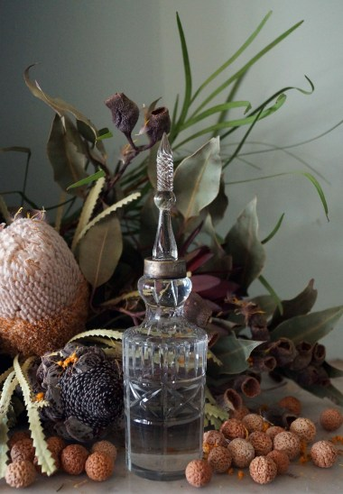 Quandong Seed Oil