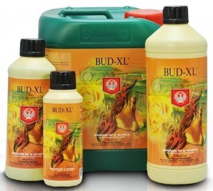 house-garden-bud-xl