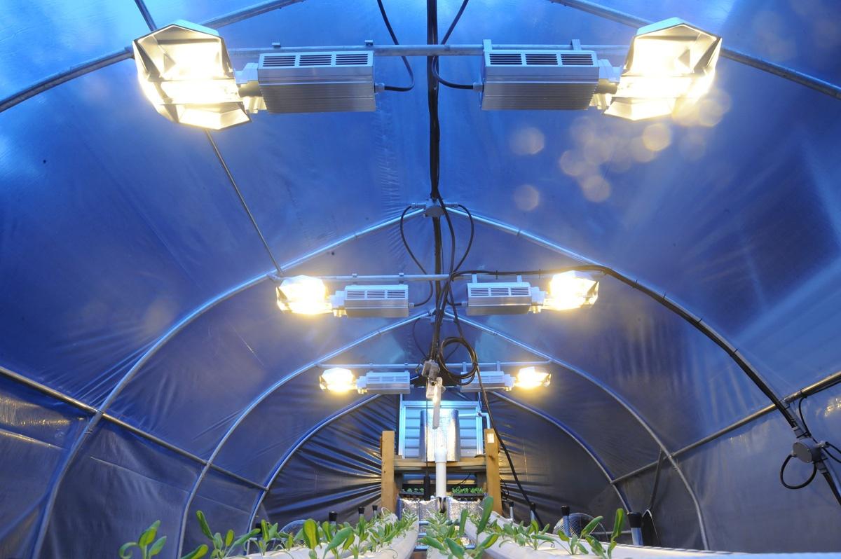 El control Climático en Invernaderos de Cannabis