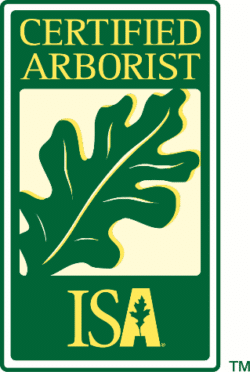 Tiffany Faulstich ISA Certified Arborist #WE-11753A