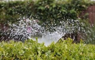 Sprinkler bubbling inefficiently