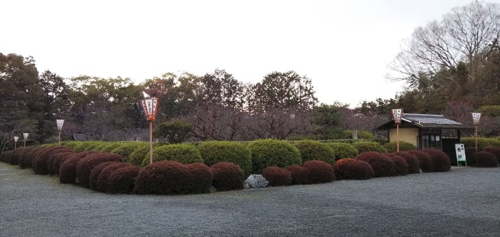 随心院の小野梅園 全景