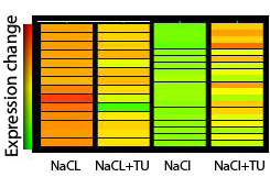 Microarray-analysis for components of salinity-stress tolerance