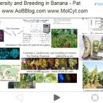 Genomics talk overview