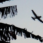 Aerial spraying to control banana disease