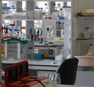 The molecular cytogenetics lab in the University of Leicester. At the front, there are two red PCR machines used to amplify DNA from banana to measure diversity and analyse genes.