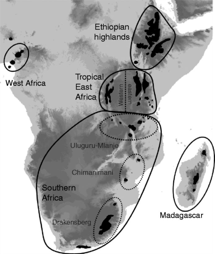 Distribution of Afrotemperate (Afromontane and Afroalpine) regions in Africa adapted from Gehrke and Linder (2014) based on White (1983).