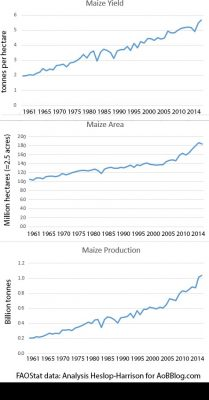 World averages for maize or corn yield, area grown and production 1961-2014