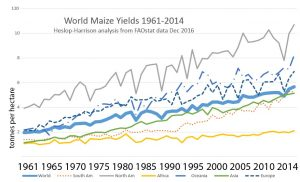Maize yield across regions of the world