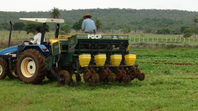 Seeding herbicide-tolerant corn into weedy grass in Brazil. Unlike adjacent cassava fields, there is no erosion of soil from tillage, wind or rain. The weeds will be sprayed off with glyphosate once the maize seedlings are established.