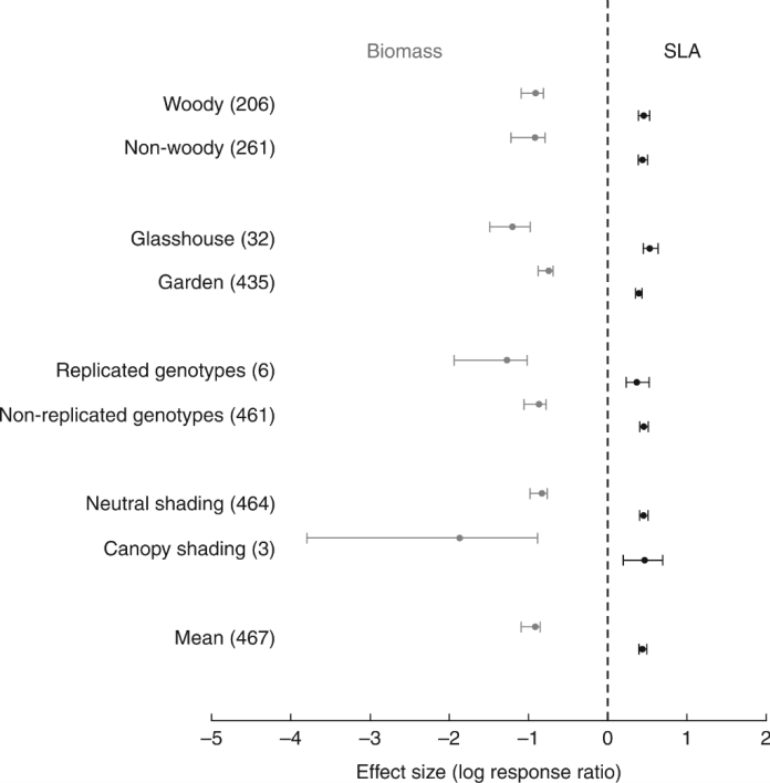Mean effect sizes (log response ratio) describing the overall responses of biomass and SLA to shading