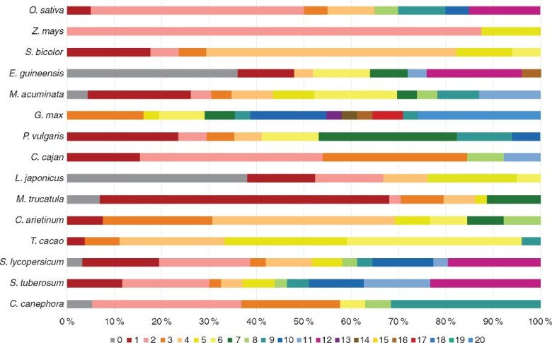 Chromosomal distribution of NLL genes across different species.