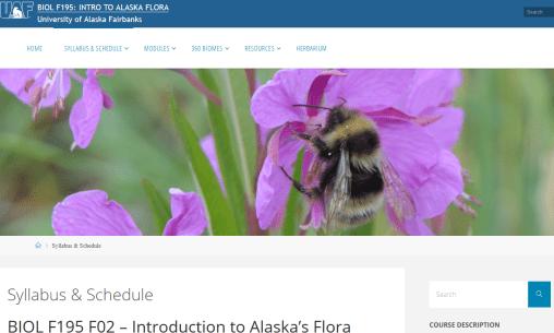 UAF Intro to Alaska flora banner