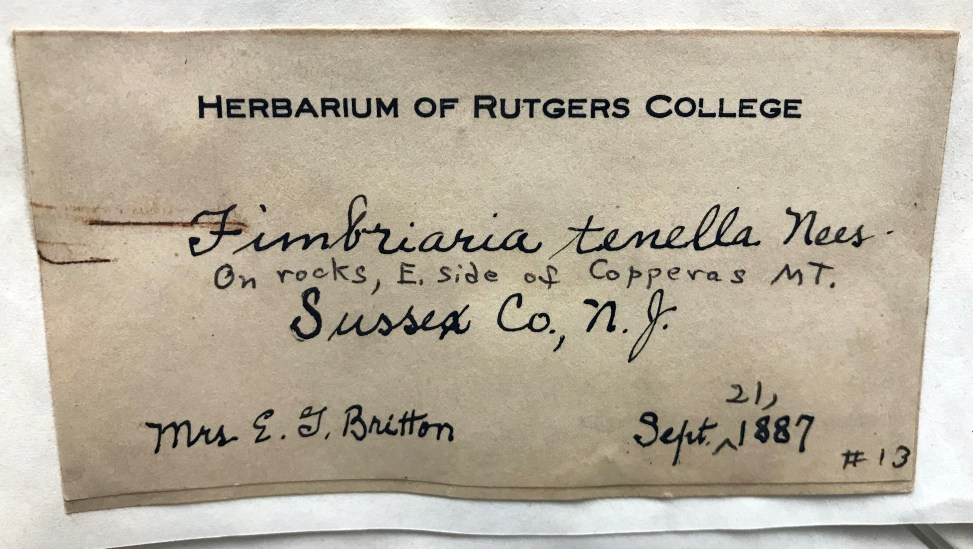 Label of moss collection from Chrysler Herbarium.